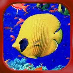 Aquarium Design Pro