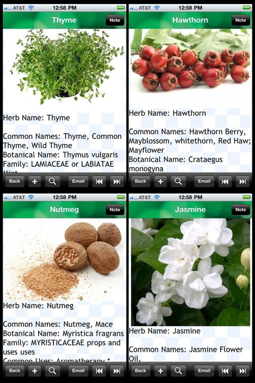 Medicinal Herbs Encyclopedia screenshot-1