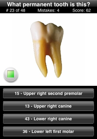 Animated Tooth Quiz screenshot-4