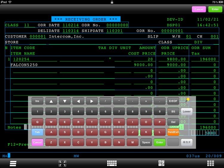 FALCON 5250 for iPad LITE