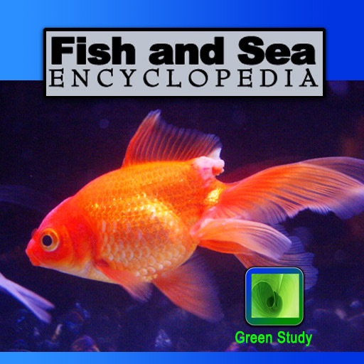 Fish and Sea Encyclopedia