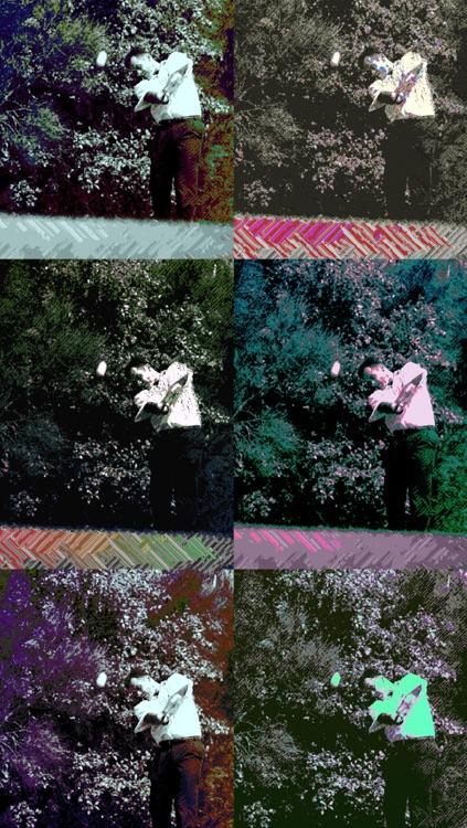 Crazy Color Cam screenshot-3