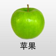 宝宝卡片-大百科 双语发音