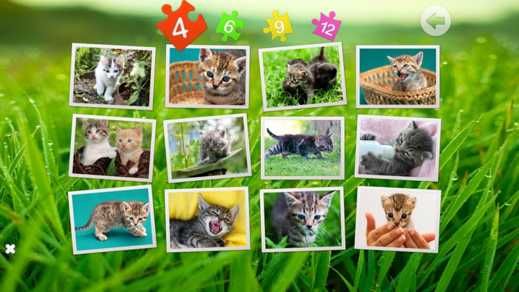 Cats puzzle - fun for kids screenshot-4