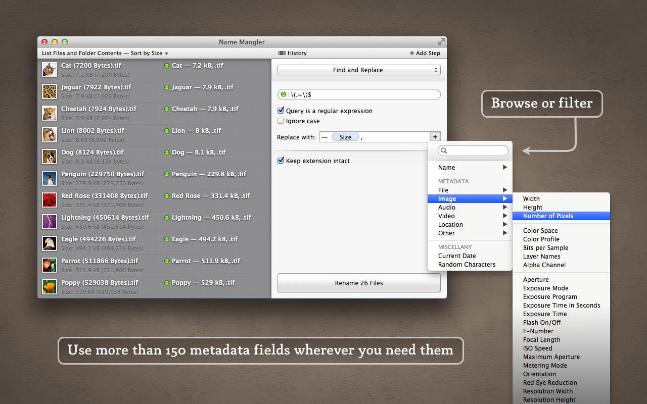 Name Mangler 3.7.2 Mac 破解版 批量处理文件重命名