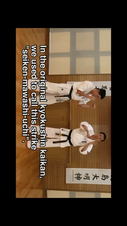 Lifelong Kyokushin Karate Basics EN screenshot-2