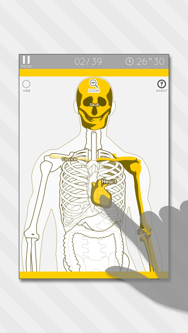 Enjoy Learning Anatomy Model Puzzle App Price Drops