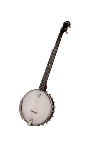 Banjo!! screenshot two