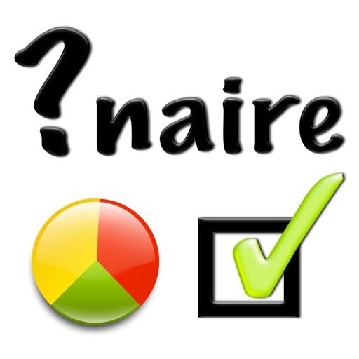 Questionnaire Review