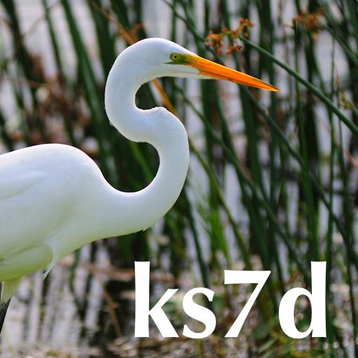 K3NetServer