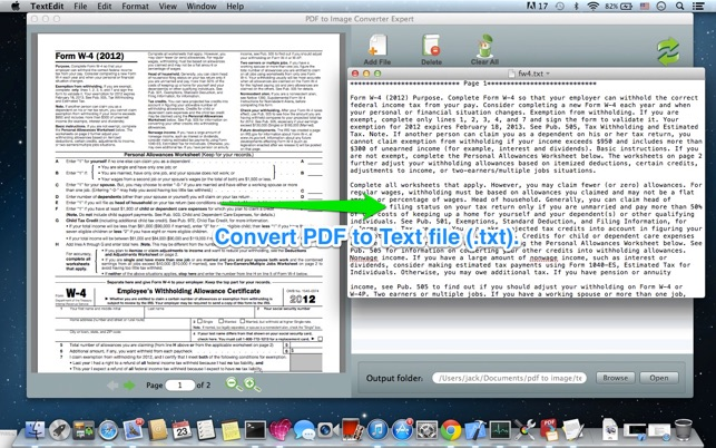 convert pdf page to image c
