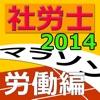 社労士マラソン2014 - 労働編