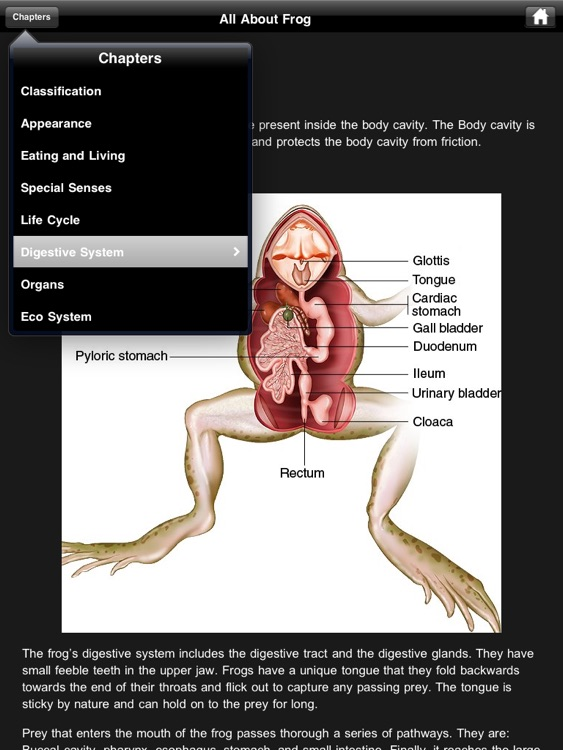 Frog Dissection screenshot-4