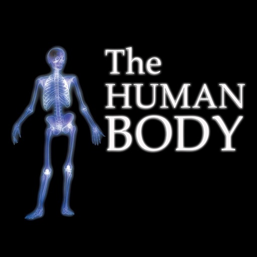 The Human Body Review