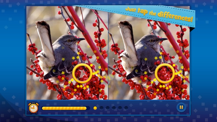 Spot the Difference! What's the Difference? screenshot-3
