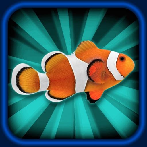 Aquarium Maker