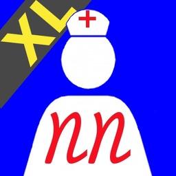 Nurse Notes XL for the iPad