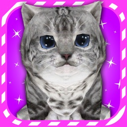 Virtual Pet Kitten