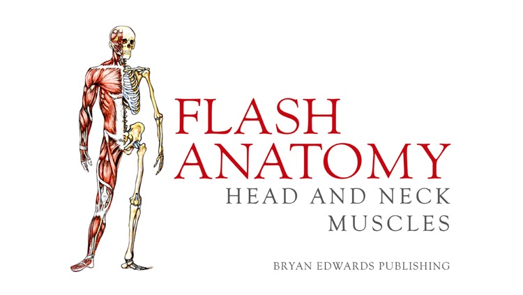 Flash Anatomy Head & Neck Muscles