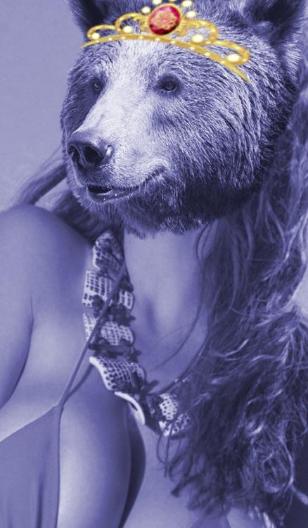 Bearify™-Sticker and Wallpaper App in One!  Bear Head Photo & Sticker App! screenshot-3