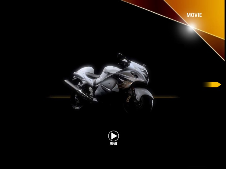 SUZUKI HAYABUSA screenshot-3