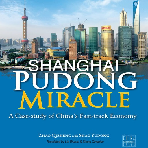 ShangHai Pudong Miracle by ZhaoQizheng