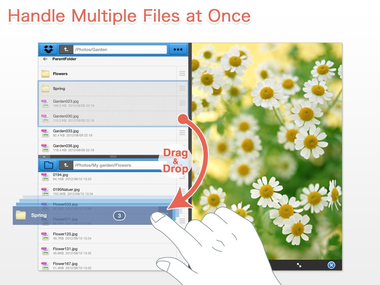 BoxCrane for iPad - FileCrane for Dropbox screenshot-4