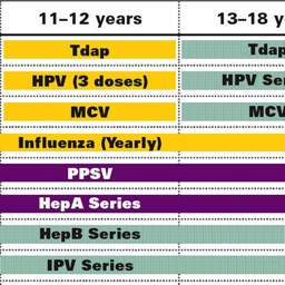 CDC Vaccine Schedule for Adults & Children