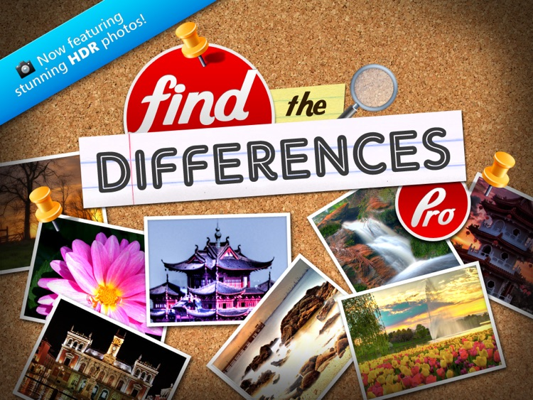 Find the Differences Pro HD -Compare & Hunt Pocket Puzzle Strategy for iPad
