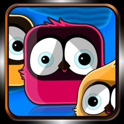 Bird Zooma HD