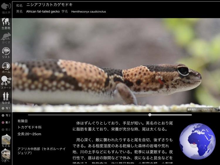 Reptile Life for Japan FREE screenshot-4