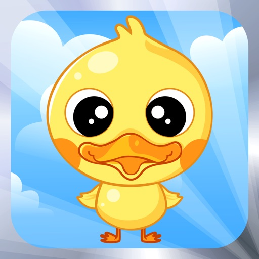 Save Bird