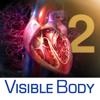 3D Heart & Circulatory Premium 2