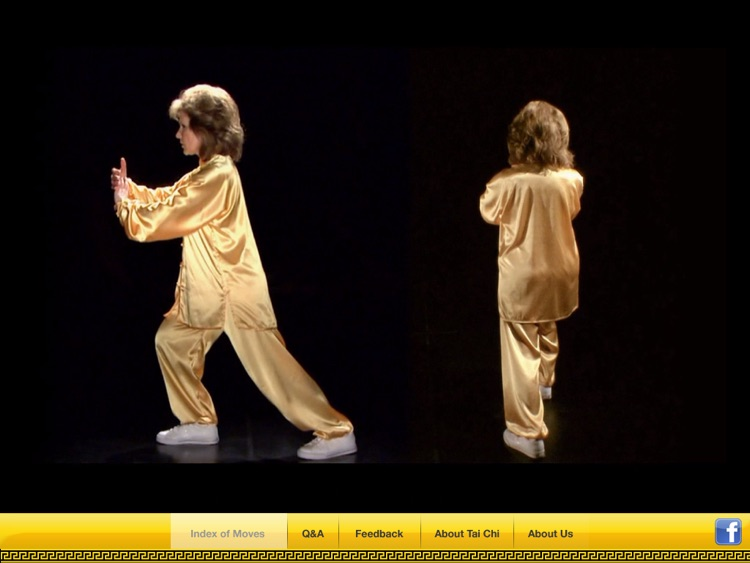 Tai Chi 17 screenshot-2