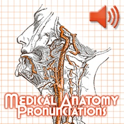 Anatomy Pronunciations