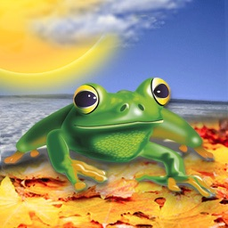 WeatherFrog - Accurate World Weather Forecast