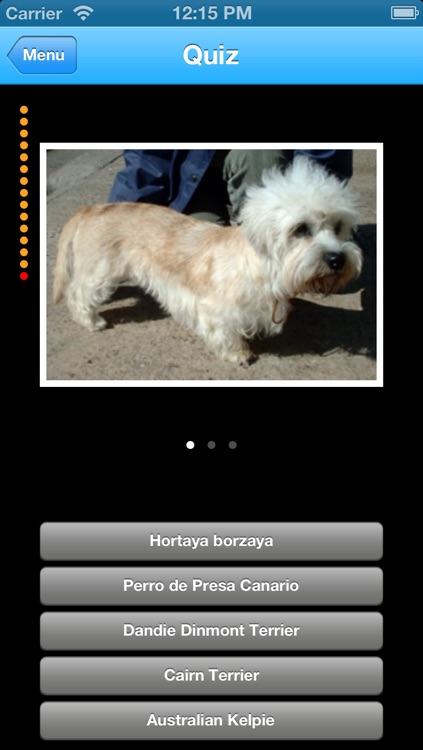 Dogs Info screenshot-4