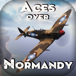 Aces over Normandy. Combat Flight Simulator