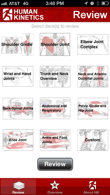 Anatomy & Kinesiology Flashcards