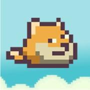 Flappy Doge - Flappy Flyer