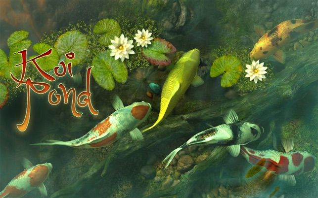 Koi pond 3d on the mac app store for Koi fish store