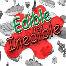 PICA & AUTISM HELP:  Sorting Edible And Inedible Items