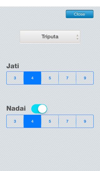 iMridangamLt  Manjira Tambura Player screenshot four
