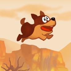 Activities of Flappy pup