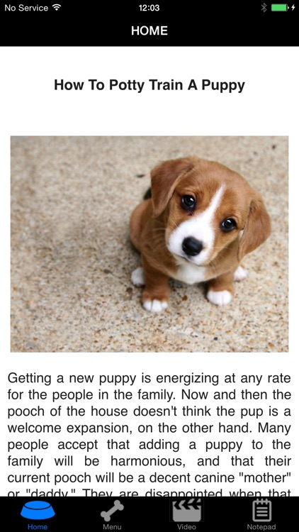 How To Potty Training A Puppy - Complete Guide screenshot-0