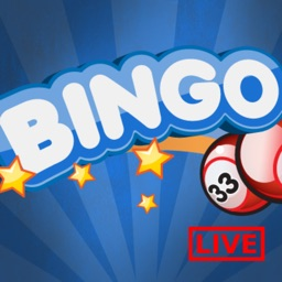 Bingo Live Fun