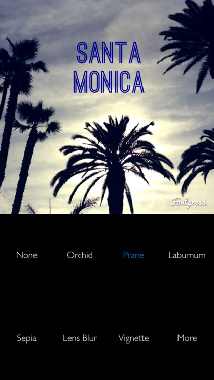 Fontpress Free: Caption Photos and Write Over Pictures with Beautiful Typography and Image Filter Effects screenshot-4