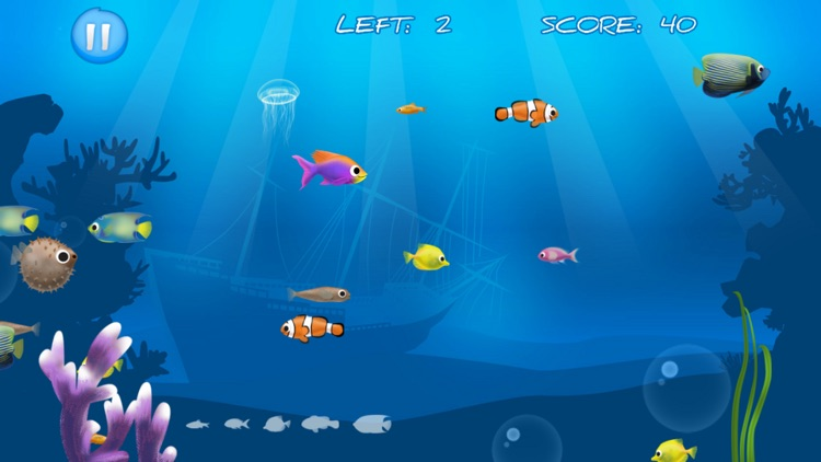 Best Hungry Fish screenshot-3