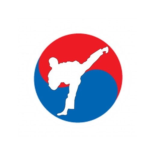 Tae kwon do 101: Quick Learning Reference with Video Lessons and Glossary