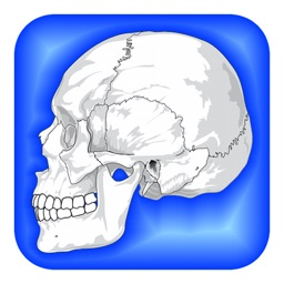 Human Body Facts 1000: Fun Anatomy and Physiology Daily Study Guide Free!